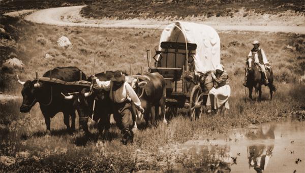 Wagon-in-Marsh (1)